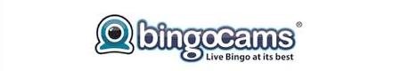 Bingocams nederland